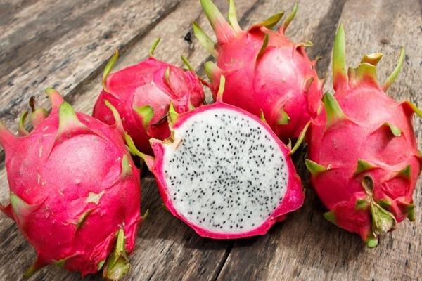 lezzetli ve sağlıklı tropikal meyveler pitaya