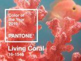 Pantone 2019 Yılının Rengini Açıkladı