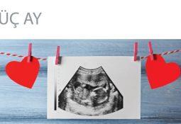 Hamileliğin İlk Üç Ayı