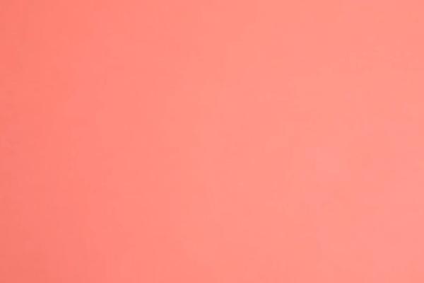 pantone yılın rengi 2019