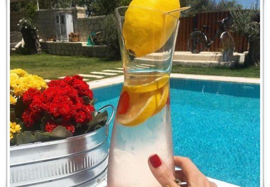 diyetisyen ferin batman detox limonata tarifi