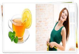 zayıflama yardımcı buzlu çay tarifi dr.ender saraç