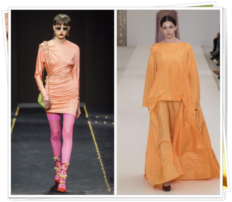 2019 moda rengi
