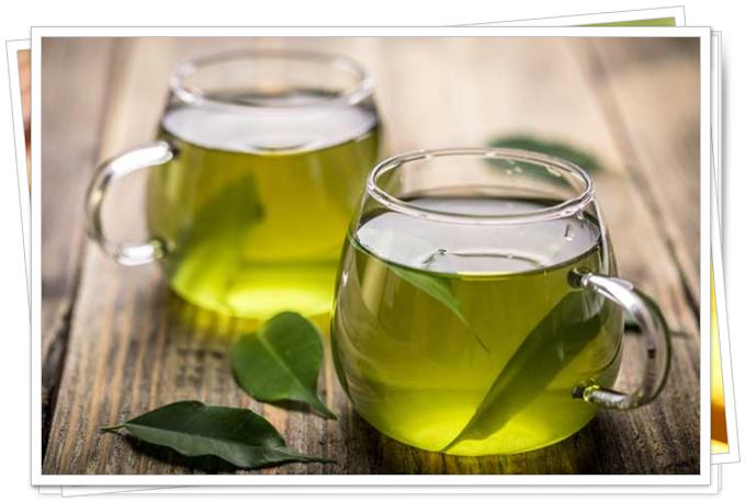 yeşil çayının faydaları