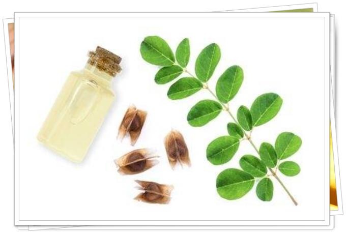 çay ağacı yağıyla dezenfektan nasıl yapılır