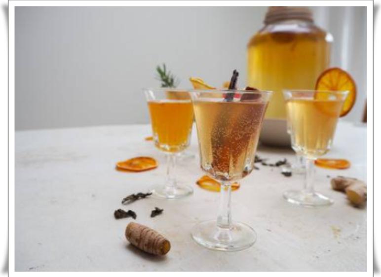 kombucha çayı faydaları