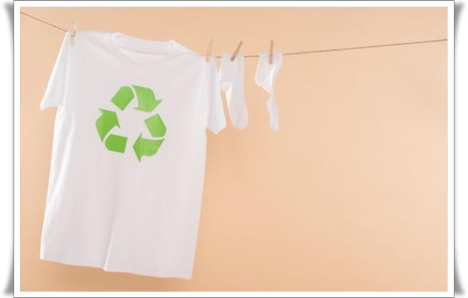 ekolojik moda nedir